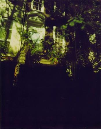 Polaroid-Bergen