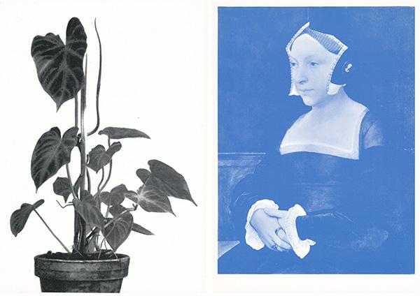 art-history-53+plant-1